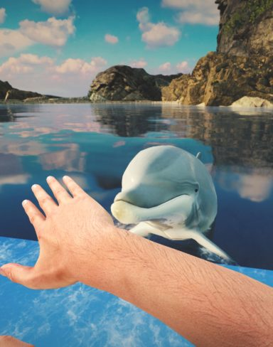 Dolphin Trainer VR